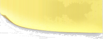 yellow-sticker-bottom